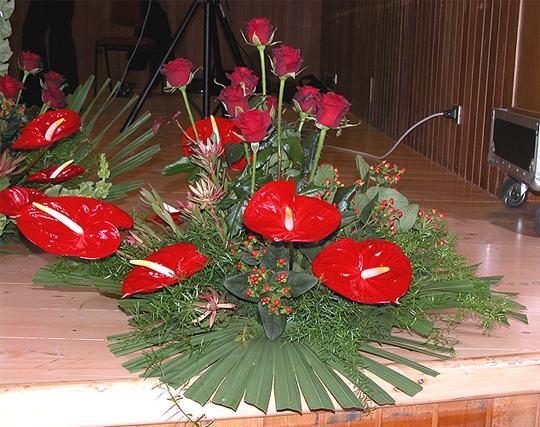 Fior di nozze for Anthurium rosso